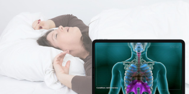'Adult Restricted Airway' and 'Mouth Breathing' Videos Added to Patient Education Platform