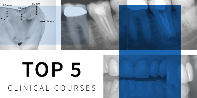The 5 Top Spear Online Courses of 2020